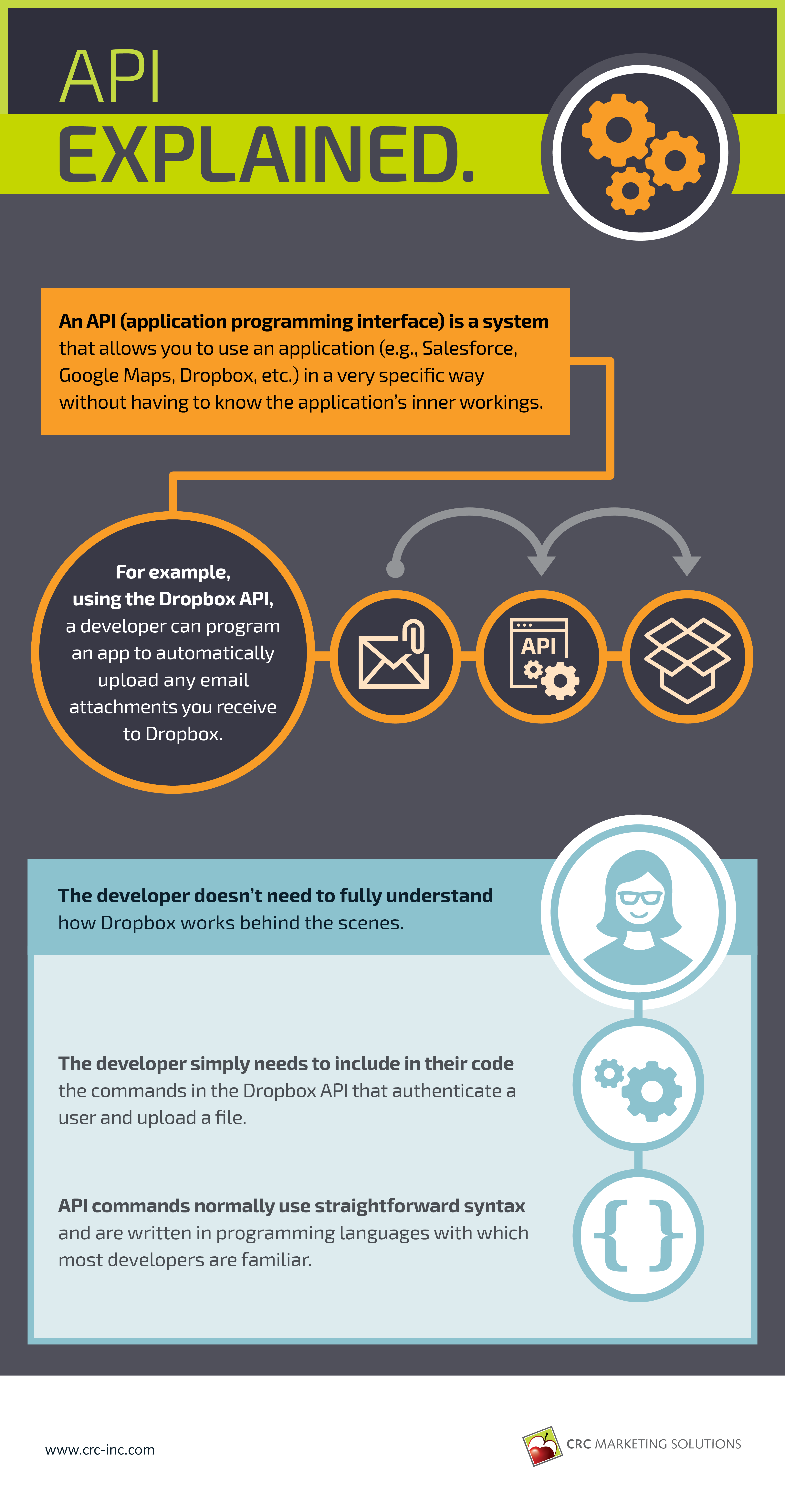 API explained Infographic