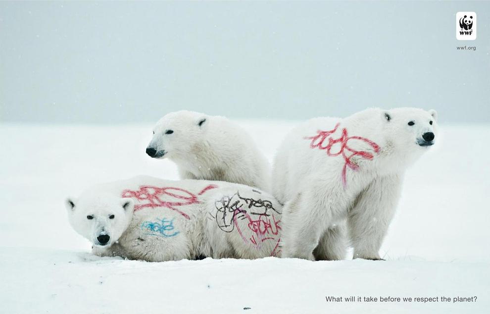 Ogilvy for Word WildLife Fund - Biodiversity And Biosafety Awareness, Polar bear